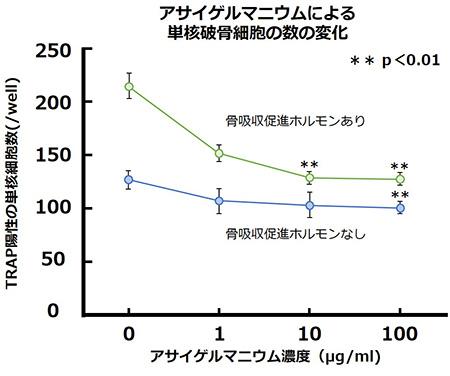 アサイゲルマニウムによる単核破骨細胞の数の変化